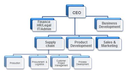 Design example of the organisation at ChromoGenics
